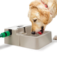 Automatic Pet Waterer, One Size