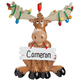 Personalized Christmas Moose Ornament, One Size
