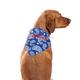 Personalized Dog Bandana, One Size
