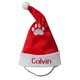 Personalized Santa Pet Hat, One Size