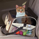 3-In-1 Pet Booster, Car Seat & Carrier, One Size