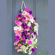 Bag O'Blooms Sun Loving Petunias, One Size