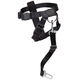 Dog Car Harness, One Size