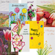 All Occasion Cards Value Pack of 24, One Size