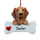 Personalized Golden Retriever Ornament, One Size