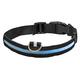 LED Glow Dog Collar, One Size