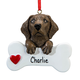 Personalized Chocolate Lab Ornament, One Size