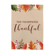 Personalized Thankful Garden Flag, One Size