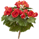 Silk Begonia Bush, One Size