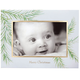 Watercolor Pine Photo Christmas Card Set of 18