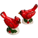 Cardinal Salt & Pepper Shakers