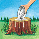 Tree Stump Remover