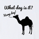 What Day Is It? T-Shirt - White, Large