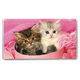 Personalized Kitten 2 Year Planner
