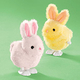 Wind Up Hopping Bunny Toy