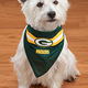 NFL Dog Bandana