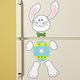Bunny Refrigerator Magnet Set