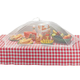 Picnic Size Food Umbrella, One Size