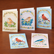 Song Bird Greeting Cards Set of 24, One Size