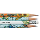 Bug Pencils - Set of 12