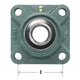AMI Bearing 4-Bolt Flange 1in