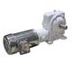 Gearbox 60:1 w/Motor & Coupling 208-460V