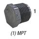 Plug, 850-015 PVC80 1-1/2in MPT