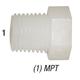 Plug F14 Nylon Hex Head 1/4in MPT