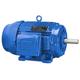 Motor Vac 7.5HP 3600RPM 213T 230/460 TEF