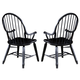 Liberty Furniture Treasures Bow Back Arm Chair in Black 17-C4051 (Set of 2)