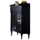 Liberty Furniture Treasures Display Cabinet in Black 17-CH4866B