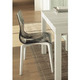 Domitalia Gel-L Accent Chair in Fume and Walnut (Set of 2)