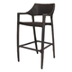 Source Outdoor Tuscanna Barstool (Set of 2) in Espresso SO-305-08