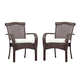 South Sea Rattan Martinique Outdoor Dining Arm Chair (Set of 2) 75221