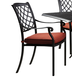 Tanglevale Outdoor Chair w/ Cushion in Burnt Orange (Set of 4) P557-601A