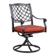 Tanglevale Outdoor Swivel Chair w/ Cushion in Burnt Orange (Set of 2) P557-602A