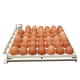 Harris Farms Free Range Automatic Egg Turner