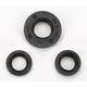 Oil Seal  Set - 0935-0035