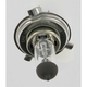60/55W Quartz Halogen Headlight Bulb w/P43T Base - 01009-BP