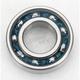 25x52x15mm Bearing - 6205RS
