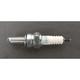 Spark Plug - CR8E