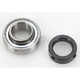 1 in.x52x1.25 in. Double Sealed Bearing - RA100NPPB