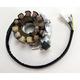 High Output 250W Stator - 2112-0510