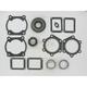 2 Cylinder Complete Engine Gasket Set - 711147C