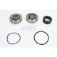 Bearing and Seal Kit - 14-1009