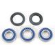 Wheel Bearing and Seal Kit - 25-1111