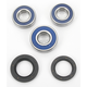 Rear Wheel Bearing Kit - A25-1117