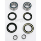 Front Wheel Bearing Kit - PWFWK-H14-040