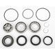 Rear ATV Differential Bearing - A25-2010