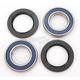 Rear Wheel Bearing Kit - A25-1122